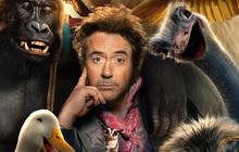 """Phim tái xuất của """"Iron Man"""" Robert Downey Jr. đứng trước khả năng lỗ đến trăm triệu đô?"""