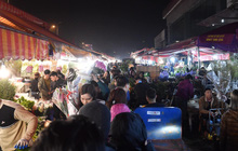 """Ảnh: Chợ hoa Quảng An """"thất thủ"""", thương lái và người dân đi mua hoa tết chen chúc trong đêm"""