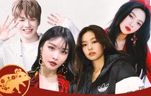 Sự nghiệp các idol Kpop tuổi Tý: Người là thành viên nhóm nhạc hàng đầu được săn đón, người chật vật thi show sống còn nhưng nhóm lại disband