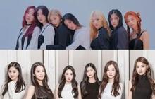 """5 girlgroup ra mắt 2020: """"Gà"""" SM giấu kĩ đội hình, nhóm tái cấu trúc hậu debut thất bại, """"em gái MAMAMOO"""" tiềm năng với nhiều màn cover ấn tượng"""