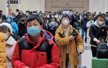 Du học sinh Trung Quốc vừa về nhà lại gặp virus Vũ Hán: Bữa ăn đoàn viên gượng gạo, người thân bị ốm cũng không dám đưa đi viện