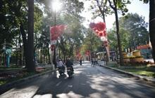 Ảnh: Sài Gòn bình yên trong nắng ban mai, đường phố vắng người qua lại sáng Mồng 1 Tết Canh Tý 2020