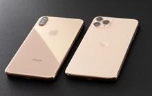 """Gửi các """"rich kid"""" dư dả 20 triệu tiền lì xì: Ra Tết nên mua iPhone XS Max hay iPhone 11 mới hợp gu?"""