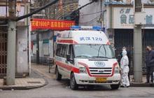 Bệnh nhân trẻ nhất qua đời vì virus Vũ Hán là nam giới 36 tuổi chưa từng có bệnh án