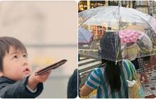"""Rơi ví ở Nhật cũng chẳng lo mất, nhưng có một vật dụng sẽ bị """"hack"""" bất kỳ lúc nào và lý do đằng sau sự thật vô lý này lại cực kỳ thuyết phục"""