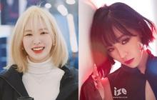 Ai thì không biết chứ riêng 5 idol này nhất định phải cắt tóc ngắn mới nhuận sắc được!