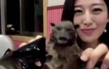 """Tự quay vlog ăn dơi từ 3 năm trước, YouTuber Trung Quốc bị """"đào lên"""" chỉ trích giữa tâm bão virus Corona"""