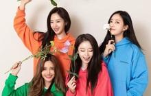 4 mẩu T-ara tái ngộ, chuẩn bị đưa fan về miền ký ức tươi đẹp trong show truyền hình đặc biệt