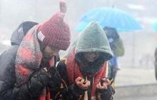Mùa đông năm nay ở miền Bắc đến sớm và có rét đậm rét hại