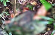 Đi săn khỉ, một thanh niên bị súng cướp cò tử vong tại chỗ