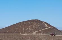 Phát hiện hình vẽ chú mèo siêu to khổng lồ 2000 năm tuổi giữa sa mạc hẻo lánh
