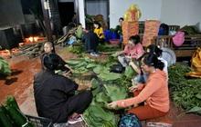"""Người Hà Nội tập trung tại chùa nấu bánh chưng gửi đến đồng bào miền Trung: """"Bánh chưng dinh dưỡng gấp nhiều lần lương thực khác, bảo quản được lâu hơn"""""""