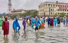 TP Hà Tĩnh biến thành sông, người dân đổ xô ra đường bắt cá