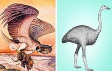 """7 sinh vật huyền thoại tưởng chỉ có ở phim ảnh nhưng lại từng làm mưa làm gió Trái Đất trong quá khứ, """"nàng tiên cá"""" cũng không ngoại lệ"""