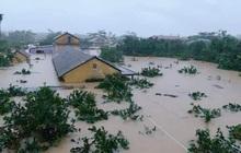 """Trung tâm Dự báo KTTV Quốc gia cảnh báo đặc biệt khu vực """"trọng tâm"""" bão số 8"""