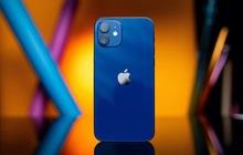 Website các cửa hàng lớn nhỏ rợp bóng iPhone 12 VN/A, thị trường xách tay đang nhạt dần?