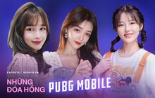 """Top những nữ streamer PUBG Mobile xứ Trung xinh đẹp ngất ngây, cộng đồng chỉ vào """"ngắm gái"""" chứ chẳng ai xem game!"""