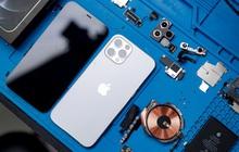 """""""Mổ bụng"""" iPhone 12 Pro đầu tiên tại Việt Nam: Sắp xếp vị trí linh kiện có chút khác biệt, bo mạch chữ L, pin 2815mAh"""
