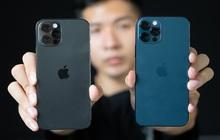 So sánh 2 màu đẹp nhất trên iPhone 12 Pro: Đen Graphite và Xanh Pacific