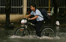 2 tỉnh thành gửi công văn khẩn cho học sinh nghỉ học để tránh bão số 9