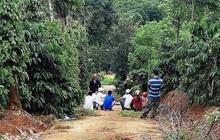 Sơn La: Ra tay sát hại bố đẻ, nam thanh niên sau đó được phát hiện tử vong gần nhà