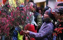 Trình Thủ tướng phương án nghỉ Tết Nguyên đán Tân Sửu 7 ngày, nghỉ Quốc khánh 4 ngày