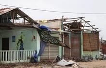 Hơn 84.000 ngôi nhà bị đổ sập, tốc mái khi bão số 9 đi qua tỉnh Quảng Ngãi