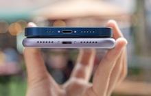 So sánh nhanh iPhone 11 với iPhone 12
