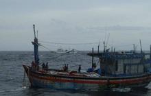 Tiếp tục điều thêm 2 máy bay tìm kiếm ngư dân mất tích