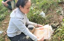 Vụ sạt lở vùi lấp cả ngôi làng ở Trà Leng: Cô giáo chết lặng nhặt từng tấm giấy khen lấm lem bùn đất của 4 học trò gặp nạn