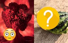 Những loại hoa quả - đồ ăn biến hoá đến kinh dị, càng nhìn càng thấy giống những thứ không nên nghĩ tới