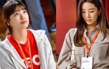 Spoil cực mạnh tập 5 Start Up: Suzy quỳ gối để chiêu mộ nhân tài về đội khởi nghiệp?