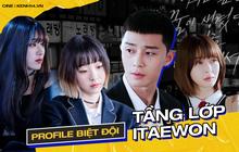 """Cười bò với """"profile"""" dàn cast Tầng Lớp Itaewon của fan Việt: Biệt đội """"thích là nhích"""", Park Seo Joon dẫn đầu về độ điên"""