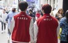 Đẹp trai, giàu có, tài năng là thế nhưng Faker vẫn có antifan, đó không ai khác mà chính là bạn thân Wolf