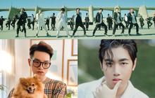 """Một phách lên luôn: BTS """"quật"""" K-ICM khỏi top 1 trending, Đức Phúc, Orange hay Jack đều phải """"dẹp ra"""" cho ARMY thể hiện sức mạnh đua view hết!"""