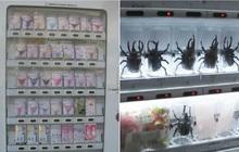 """""""Vũ trụ"""" máy bán hàng tự động ở Nhật Bản, nhiều loại độc lạ đến nỗi khiến du khách ngỡ mình đang lạc vào hành tinh khác (Phần 1)"""