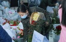 Xếp hàng từ 7h giờ sáng mua hoa hồng Đà Lạt 1.000 đồng/bông