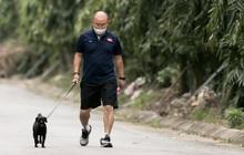 HLV Park Hang-seo thảnh thơi dắt chó cưng đi dạo, cổ vũ tuyển nữ Việt Nam tập luyện chiều 25/2