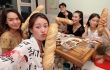 """Dàn mỹ nữ """"Hoa hậu Hoàn vũ Việt Nam"""" đọ sắc bên bánh mì, Jun Phạm làm luôn 1 ổ để có sức đấm đá"""