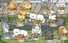 """Đi tìm 12 chú mèo khó chiều trong Adorable Home phiên bản thật, bấn loạn với độ cute vô đối của những """"hoàng thượng"""" siêu quậy!"""