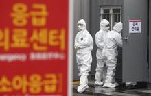 Tâm dịch Daegu có ít nhất 11 viên chức nhiễm virus corona, hàng loạt cơ quan phải đóng cửa