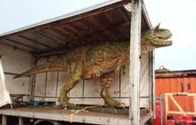 """Đặt mua khủng long đồ chơi trên mạng cho con trai mà """"quên"""" không hỏi kích thước, ông bố tá hỏa khi hàng được chuyển đến tận nhà"""