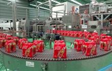 Khám phá quy trình sản xuất trà thảo mộc tốt cho sức khỏe trong mùa dịch
