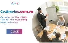 Có CV.timviec.com.vn - Cơ hội sở hữu CV xin việc dễ dàng trong tầm tay