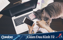 """Bí quyết làm việc online mùa dịch """"không quạo"""": Tôi đã làm việc tại nhà suốt 10 năm và đây là những điều giúp tôi thành công trong công việc"""