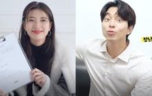 """Tiết lộ tương lai của Suzy và Gong Yoo: Tiên đoán thế nào mà khiến nữ idol cười tít mắt, """"Yêu tinh"""" xéo xắt đổi đáp án?"""