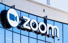 Zoom - ứng dụng họp online hot nhất trong mùa dịch mang lỗi bảo mật nghiêm trọng, hacker có thể chiếm quyền sử dụng máy tính người dùng