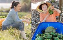 Lý Nhã Kỳ ở nhà làm nông mùa dịch: Giản dị đội nón lá, diện đồ ngủ đi hái trái cây trên nông trại 50 hecta ở Đà Lạt