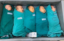 5 thiên thần nhỏ chào đời trong khu cách ly Bệnh viện Bạch Mai