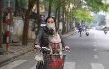 Ngắm nhịp sống trầm lặng trên những con phố siêu ngắn ở Hà Nội mùa dịch Covid -19